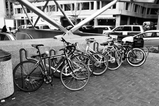 Bicycles Galore...