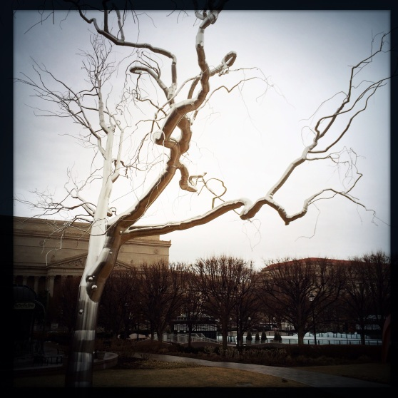 "Roxy Paine's ""Graft"" • National Gallery of Art Sculpture Garden"